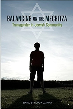 Image de Dzmura, Noach: Balancing on the Mechitza