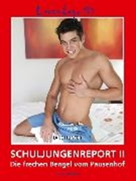 Bild von Hunter, Jake: Schuljungenreport II (eBook)
