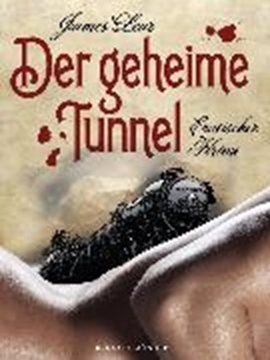 Image de Lear, James: Der geheime Tunnel (eBook)