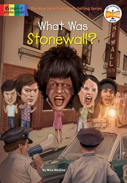 Image de Medina, Nico: What Was Stonewall?