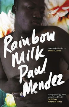 Image de Mendez, Paul: Rainbow Milk