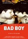 Story of a Bad Boy (DVD)