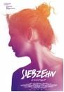Siebzehn (DVD)